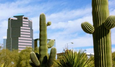 moving to or from arizona moving company.