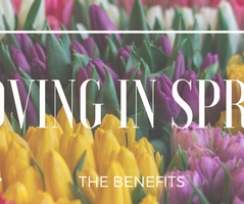 4 Benefits for Moving During the Spring Season